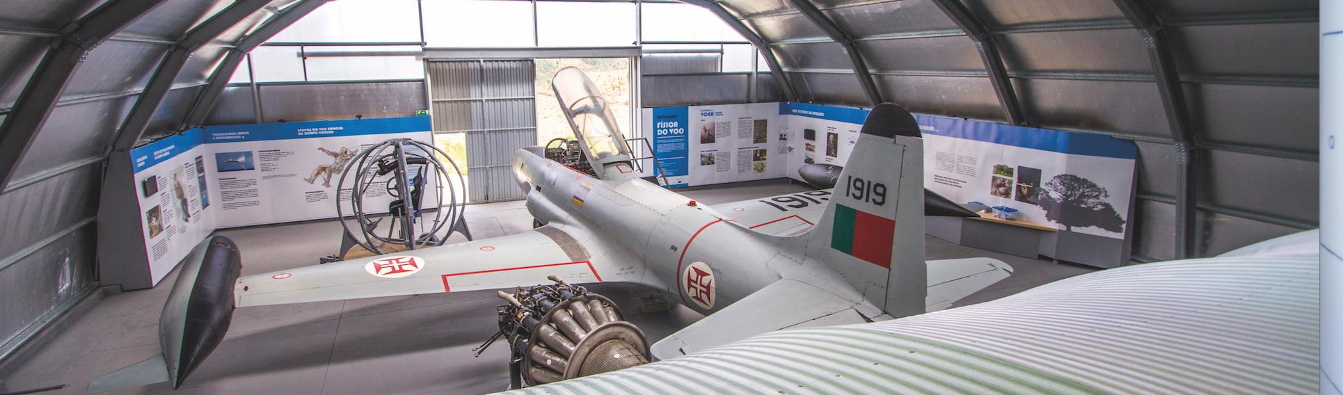 Física do Voo - Avião a Jato T33