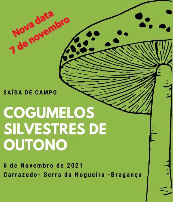 Recolha e posterior classificação e identificação de Cogumelos silvestres