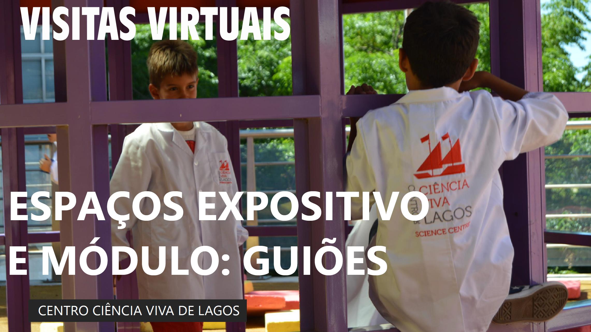 Visitas + Oficinas + Palestras Virtuais  para as Escolas