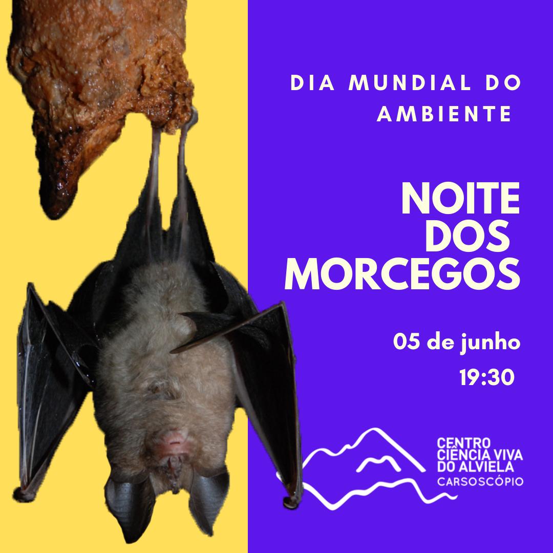 Noite dos Morcegos - Dia Mundial do Ambiente